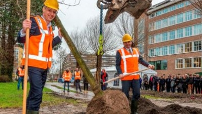 First tree planted at Schilperoortpark